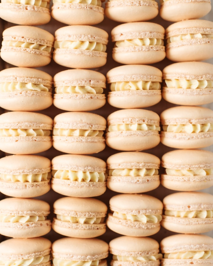 Close up shot of mandarin orange macarons lined up in rows